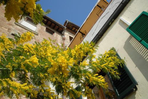 Il Giardino Di Sant'Agostino