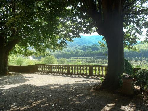 Locazione turistica Nicoletta