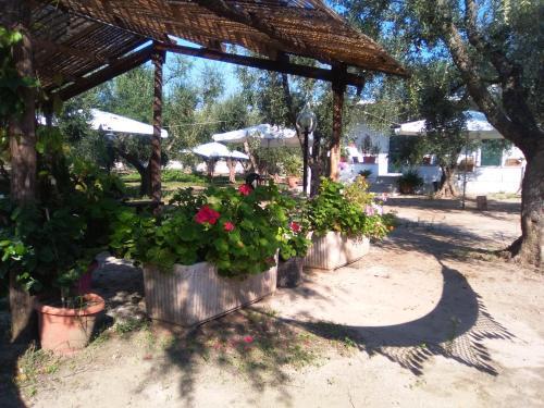 Casa Vacanza Fiorella