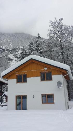 Apartment Obertraun