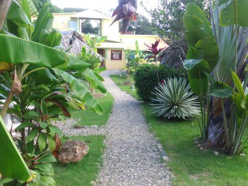 Yasipark Jungle Camp and Ecolodge