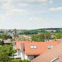Schöne 3 Zi-Dachgeschosswohnung & gigantische Aussicht