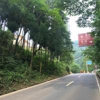 Mount Emei Feng Lin Yue Hotel