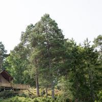 Anfasteröd Gårdsvik - Tälten