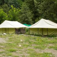 Camp Jungle Brooks