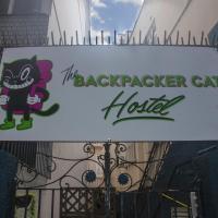 The Backpacker Cat Hostel
