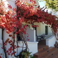 Pinotage @ De Kraal Estate