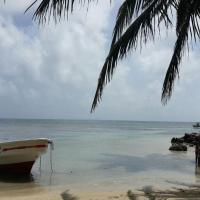 Island Roots Hostel