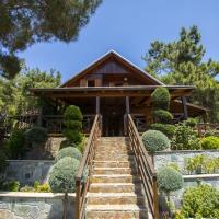 Ricky Chalet Near Troodos
