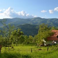 Carpathian Cottage