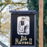 The Jack Russell
