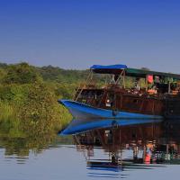 Orangutan River Cruise