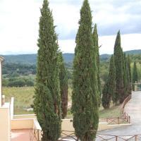 Vepri Residence, Tuscany