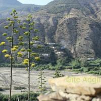 Afghal_Rif