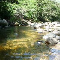 Casinha na beira do rio