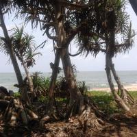 'SAI DHAM' Beach House Bungalow for Rent in Gujjadi