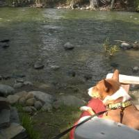 Twisp River Suites/ Paws A-While
