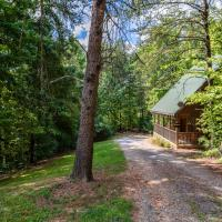 BONNIE LASS Cabin with Fire Pit Close to parkway