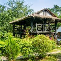 Island Jungle Resort