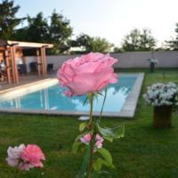 les roses de la chapelle