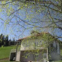Guesthouse Borovi