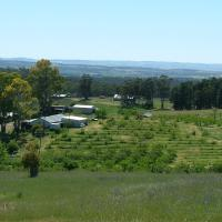 Taralee Orchards