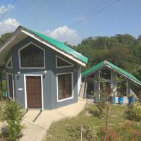Sparrow's Nest Homestays