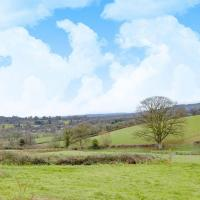 Oak View - UKC2857