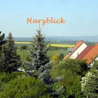 Harzblick