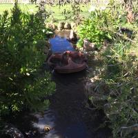 Roo Lagoon Homestead
