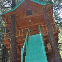 Nature View Resort in Shimla