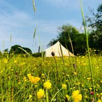 Barlow Brook Glamping