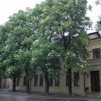 Санаторий Княжна Мери