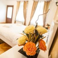 Tribunei Apartment Sibiu