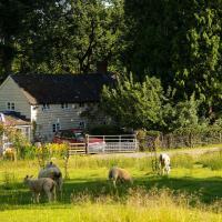 Cwmmegan Cottage