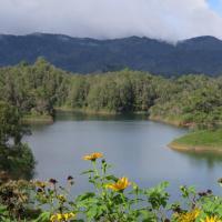 Ecolodge Bahia del Peñón
