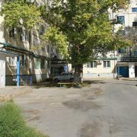 Apartament Druzhby 38