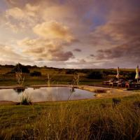 Hlosi Game Lodge - Amakhala Game Reserve