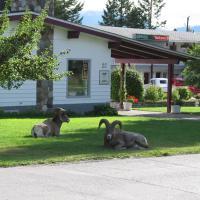 Mountain Springs Motel