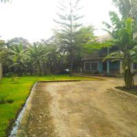 Banana Tree House