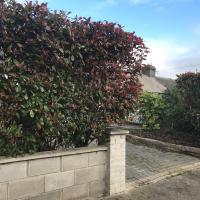 Bellvue Cottages, Glasnevin , Dublin