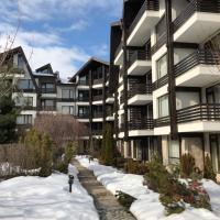 Aspen Suites in Aspen Ski and Spa Resort