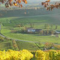 Rosbachhof umgeben von Weinbergen und Wäldern