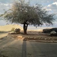 Carmit's Dead Sea Place
