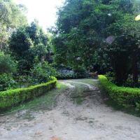 Soreena Farms - A Wandertrails Stay
