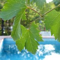 Booking.com: Hoteles en Los Santos de la Humosa. ¡Reserva tu ...