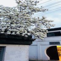Suzhou Suqi Guesthouse - Pingjiang Road Branch