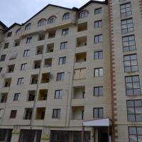 Tsaghkadzor Comfort Apartment