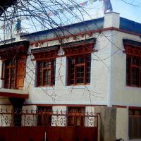 zimskhang homestay thiksay leh ladakh