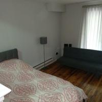 Spacious 1 BR Apartment - Sleeps 4